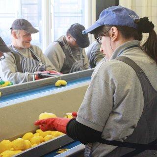 Rund sechs Tonnen Kartoffeln werden wöchentlich bei der Lebenshilfe in Gifhorn geschält.