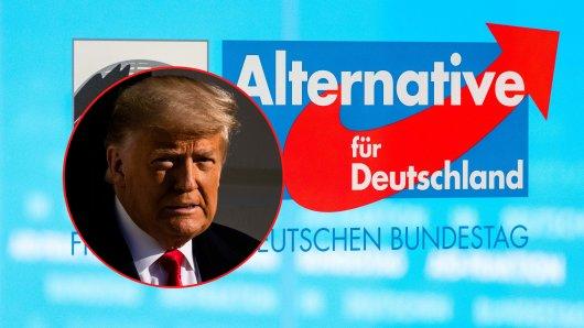 Die AfD auf den Spuren von Donald Trump? Einige Aussagen zur Briefwahl erinnern sehr an die des scheidenden US-Präsidenten. (Symbolbild)