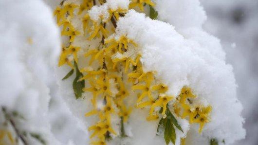 Der Deutsche Wetterdienst kündigt Schnee für Niedersachsen an.