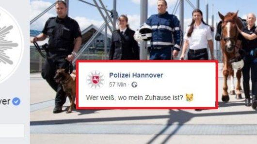 Die Polizei Hannover hat eine emotionale Suche bei Facebook gestartet.