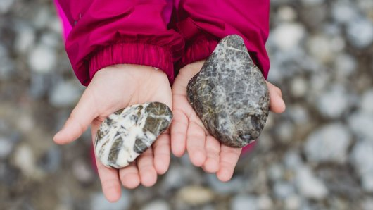 Eine Neunjährige hat im Silbersee bei Hannover einen Stein aus dem Wasser mitgenommen. Kurze Zeit später musste sie ins Krankenhaus. (Symbolbild)