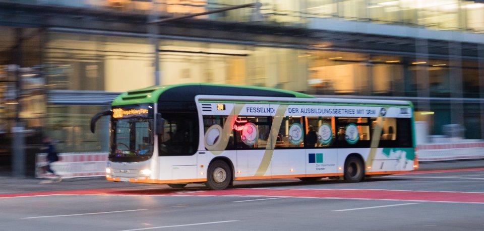 Ein Mann war mit dem Bus unterwegs, als er plötzlich eine Vollbremsung einlegen musste. Der Grund ist unglaublich. (Archivbild)