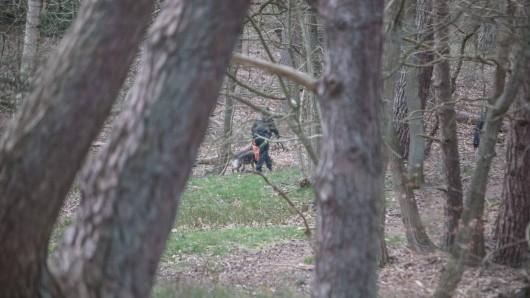 In einem Wald in Niedersachsen ist ein schauriger Fund gemacht worden. Die Polizei ermittelt. (Symbolbild)