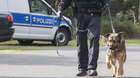Spürhund Spike hat in Niedersachsen in einem Auto Drogen erschnüffelt. Du glaubst nicht, wo sie versteckt waren. (Symbolbild)
