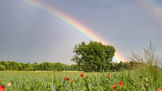Das Wetter in Niedersachsen ist gut – noch! Doch nach der Hitze kommt jetzt DAS auf dich zu....(Symbolbild)