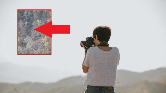Was eine Frau auf ihren Fotos nach einer Wanderung im Harz entdeckte, löste einen Schock bei ihr aus. Wenig später rief sie die Polizei, die setzte sogar einen Hubschrauber ein. (Symbolbild)
