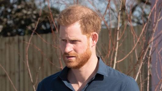 Prinz Harry: Eine Expertin hat eine interessante Beobachtung gemacht.