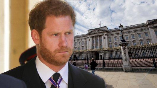 Prinz Harry könnte in einigen Jahren ganz anders aussehen.