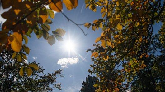 Der goldene Oktober wird in Braunschweig und Umgebung erwartet.