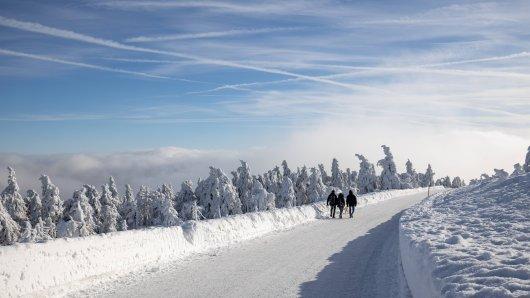 Am Brocken kannst du durch eine Winterlandschaft wandern.