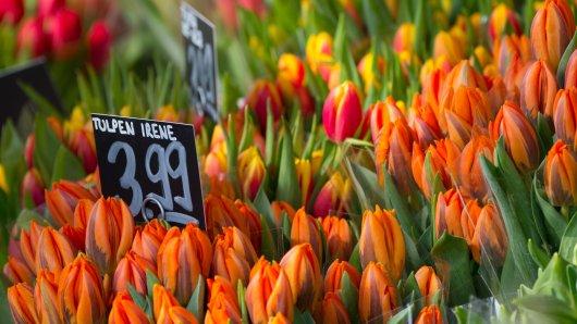 Ein Blumen-Händler aus Salzgitter teilt eine emotionale Botschaft an seine Kunden. (Symbolbild)