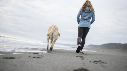 Im Urlaub in Holland macht eine Frau mit ihrem Hund eine widerliche Entdeckung. (Symbolfoto)
