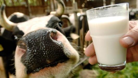 Der sinkende Milchpreis ist am Freitag Thema in Hannover.