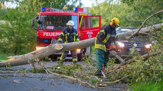 Ein Feuerwehrmann zerkleinert am 13.09.2017 in Ebstorf (Niedersachsen) einen umgestürzten Baum mit einer Motorsäge. Foto: Philipp Schulze/dpa +++(c) dpa - Bildfunk+++
