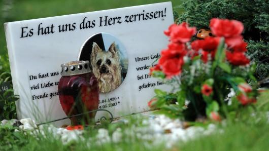 Ein Grabstein auf einem Tierfriedhof in Berlin auf dem Grab eines Tieres. (Symbolbild)