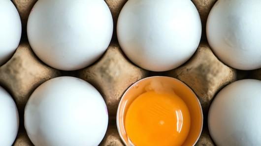 120.000 Eier sind wegen Salmonellen-Belastung zurückgerufen worden (Symbolbild).