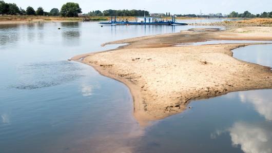 Trockengefallene Sandbänke sind in der Elbe zu sehen (Archivbild).