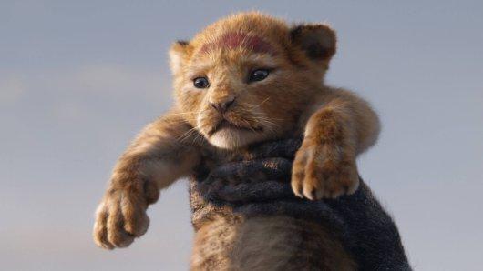 """Simba in der Realverfilmung von """"König der Löwen""""."""