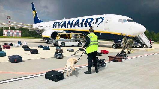 Ein Spürhund inspiziert das Gepäck vor dem Ryanair-Flugzeug. Belarussische Behörden hatten das Flugzeug auf dem Weg von Athen nach Vilnius zur Landung gebracht