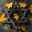 Herbstlaub liegt auf einer Grabplatte mit einem Davidstern auf dem jüdischen Friedhof. (Archivbild)