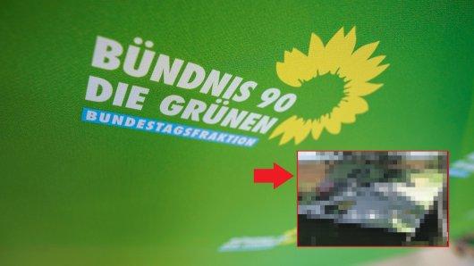 Wolfenbüttel: Harter Schlag gegen die Grüne. (Symbolbild)