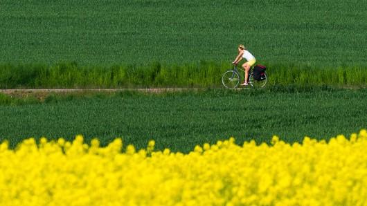 Eine Frau fährt mit ihrem Fahrrad über einen Feldweg.