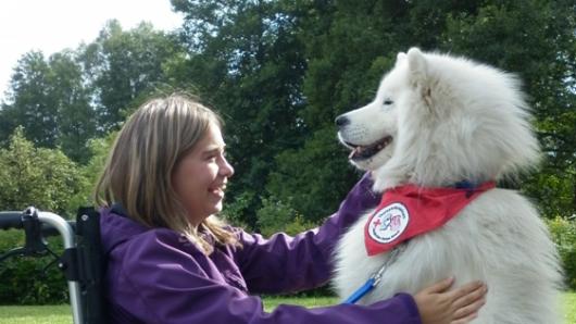 Das Deutsche Rote Kreuz Wolfsburg-Mitte möchte ein Therapiehunde-Team aufbauen.