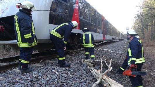 Ein Baum ist am Freitag auf die Bahngleise gekippt und hat so den Zugverkehr zwischen Wolfsburg und Magdeburg beeinträchtigt.