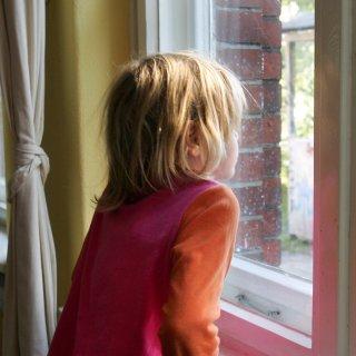 Ein Kind in Eddesse vermisst sein Holzpferd schmerzlich. Weil ein Dieb es gestohlen hat. (Symbolbild)